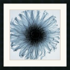 Dahlia (Blue) Framed Art Print by Steven N. Meyers