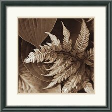 <strong>Amanti Art</strong> Painted Ferns II Framed Art Print by Rebecca Swanson