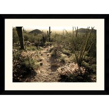 "<strong>Amanti Art</strong> Sonoran Desert by Andy Magee Framed Fine Art Print - 28.62"" x 38.62"""
