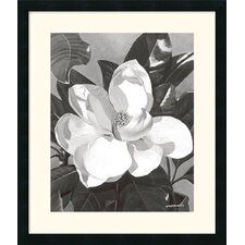 "<strong>Amanti Art</strong> White Magnolia by Marianne Hornbuckle Framed Fine Art Print - 27"" x 23"""