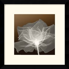 "<strong>Amanti Art</strong> Sheer Delicacy Framed Decorative Art Print - 13.12"" x 13.12"""