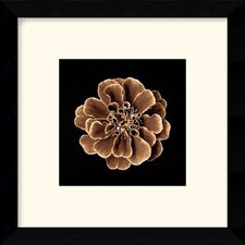 "<strong>Amanti Art</strong> Ruffles in Taupe Framed Decorative Art Print - 11.12"" x 11.12"""