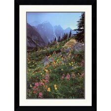 <strong>Amanti Art</strong> Valley of The Ten Peaks Framed Art Print by Galen Rowell