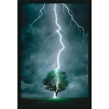 <strong>Amanti Art</strong> Lightning Striking Tree Framed Print