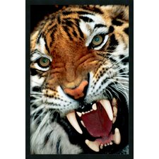 <strong>Amanti Art</strong> Bengal Tiger Close Up Framed Print