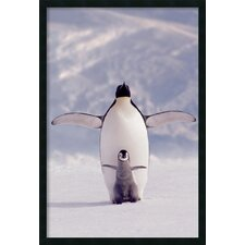 <strong>Amanti Art</strong> Penguin and Chick Framed Print