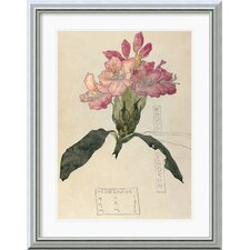<strong>Amanti Art</strong> Rhododendron, 1915 Framed Print by Charles Rennie Mackintosh