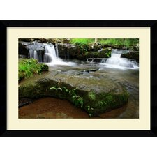 Collins Creek Cascades by Andy Mage Framed Print