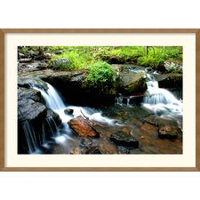 <strong>Amanti Art</strong> Natural State Framed Print by Andy Magee