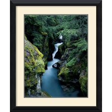 <strong>Amanti Art</strong> Avalanche Creek Framed Print by William Neill