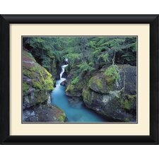 <strong>Amanti Art</strong> Mountain Forest Cascade Framed Print by William Neill