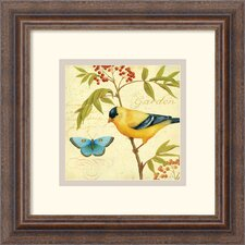 <strong>Amanti Art</strong> Garden Passion II Framed Print by Daphne Brissonnet