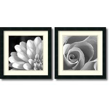 <strong>Amanti Art</strong> Pretty Petals Framed Print (Set of 2)