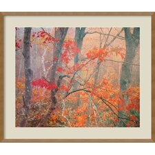 <strong>Amanti Art</strong> Framed Print Wall Art