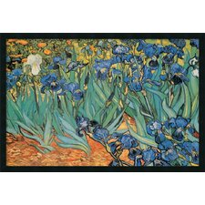 'Garden Of Irises' by Vincent Van Gogh Framed Painting Prints