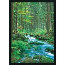 Forest Creek Framed Painting Prints
