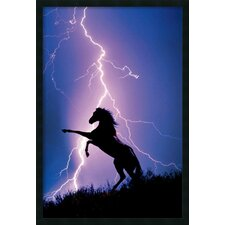 Lightning and Silhouette of A Horse Framed Photographic Prints