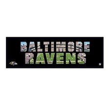 <strong>Artissimo Designs</strong> NFL Team Pride Canvas Art