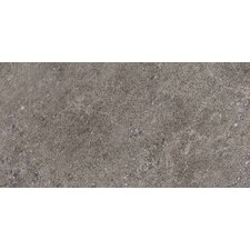 "Allora 18"" x 36"" Light Polished Porcelain Tile in Argento"