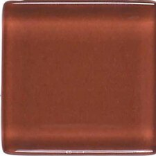 """Legacy Glass 1"""" x 1"""" Glazed Solid Wall Mosaic in Coral"""