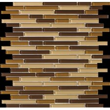 Lucente Random Sized Glossy Mosaic Pattern Blend in Filigrana