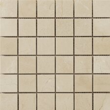 "Natural Stone 2"" x 2"" Marble Polished Mosaic in Crema Marfil"