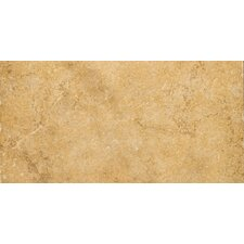 "Genoa 12"" x 24"" Glazed Porcelain Tile in Luca"