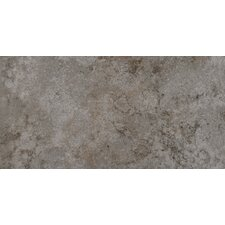 "Granada 12"" x 24"" Glazed Porcelain Tile in Silver"