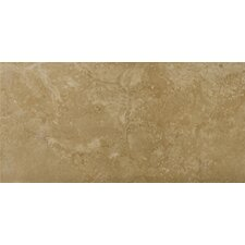 "<strong>Emser Tile</strong> Madrid 7"" x 13"" Glazed Porcelain Tile in Brava"