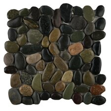 Rivera Random Sized Pebble Mosaic in Natural