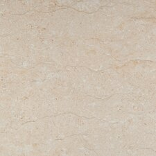 "Park Avenue 16"" x 16"" Porcelain Tile in Marfil"