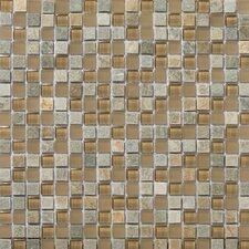 "<strong>Emser Tile</strong> Lucente 12"" x 12"" Stone and Glass Mosaic Blend in Putini"
