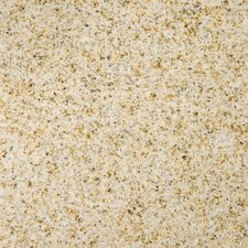 "Natural Stone 12"" x 12"" Granite Tile in Empress Gold"