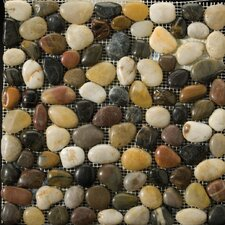Natural Stone Rivera Random Sized Pebble Unpolished Mosaic in 4 Color Blend