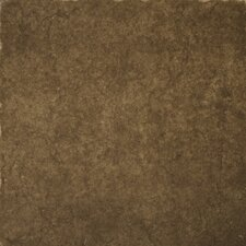 "<strong>Emser Tile</strong> Genoa 16"" x 16"" Glazed Porcelain Floor Tile in Pinelli"