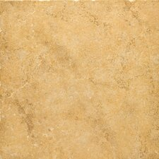 "<strong>Emser Tile</strong> Genoa 20"" x 20"" Glazed Porcelain Floor Tile in Luca"