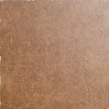 "Genoa 16"" x 16"" Glazed Porcelain Floor Tile in Sauli"