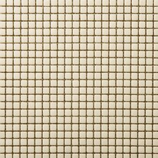 "Image 1/2"" x 1/2"" Glossy Glass Mosaic in Appearance"