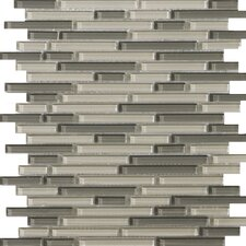 "Lucente 13"" x 13"" Glossy Glass Mosaic in Pellestri Linear"