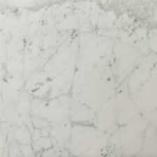"<strong>Emser Tile</strong> Natural Stone 18"" x 18"" Honed Marble Field Tile in Bianco Gioia"