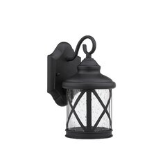 Milania Adora 1 Light Outdoor Wall Lantern
