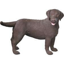 Companion Size Labrador Retriever Sculpture in Chocolate