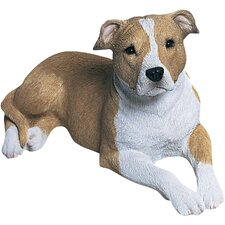 Mid Size Pit Bull Terrier Sculpture in Fawn / White