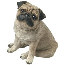 Mid Size Sitting Pug Sculpture in Fawn