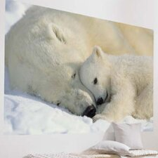 Komar Polar Bears 1-Panel Wall Mural