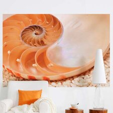 <strong>Brewster Home Fashions</strong> Komar Nautilus 1-Panel Wall Mural
