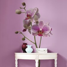 <strong>Brewster Home Fashions</strong> Komar Freestyle Orchids Wall Decal
