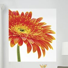 <strong>Brewster Home Fashions</strong> WallPops Art Kits Daisy Photographic Panels Wall Decal
