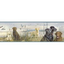 Borders by Chesapeake Trusty Labs Portrait Wildlife Border Wallpaper