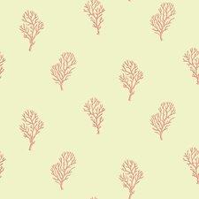 Sand Dollar Islamorada Coral Branch Wallpaper